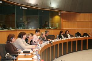 EU parliament public hearing